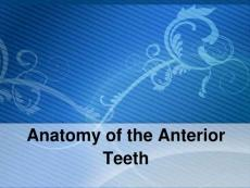 Anatomy of Upper & Lower Anterior Teeth
