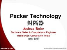 Packer Technology(封隔器)