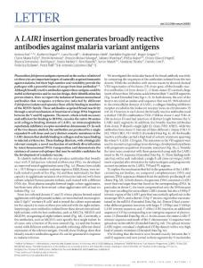 nature16450-A LAIR1 insertion generates broadly reactive antibodies against malaria variant antigens