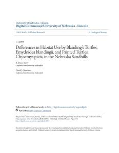 Differences in Habitat Use by Blanding  226; s Turtles, Emydoidea…