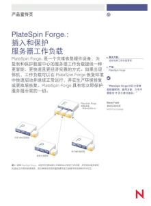 PlateSpin_Forge_Flyer_CN_2011